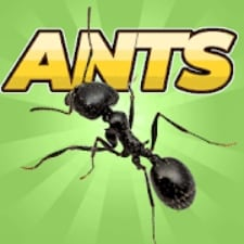Pocket Ants на Android