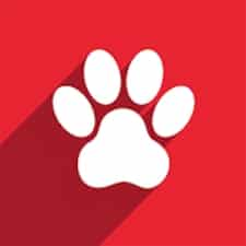 Watch Pet на Android